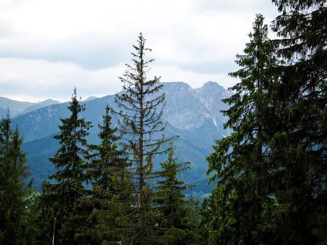 Gdzie zarezerwować nocleg w górach?