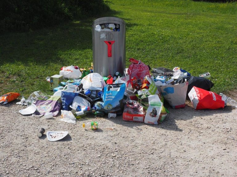Polecany wywóz odpadów poremontowych – jaki wybrać?
